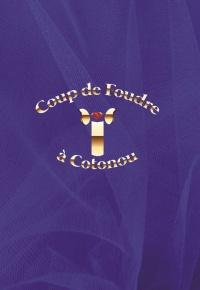 Coup de Foudre à Cotonou (2021)
